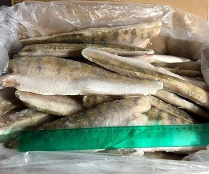 Филе судака (200-300 гр.)