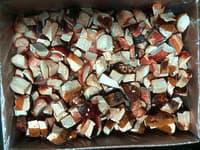Гриб белый резаный  кубик